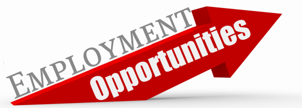 Employment Job Application Form Apply Online on olive garden, taco bell, print out, apply target, pizza hut,